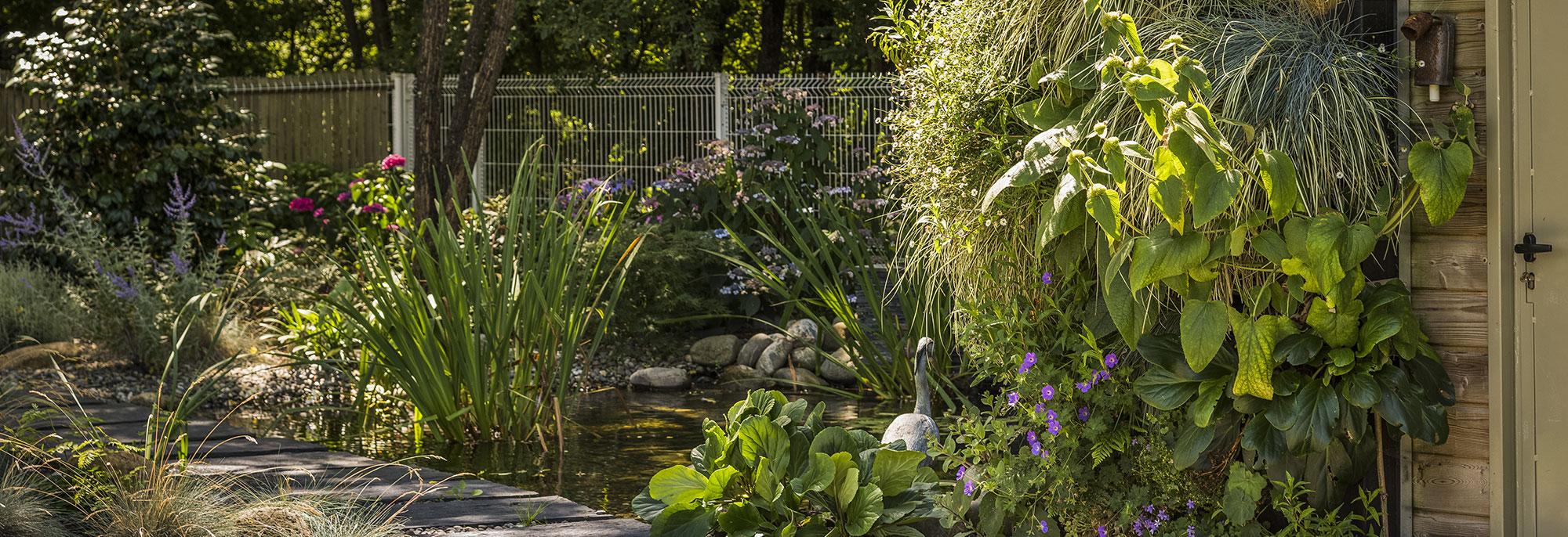 De la création à l'entretien - Murmures de Jardin