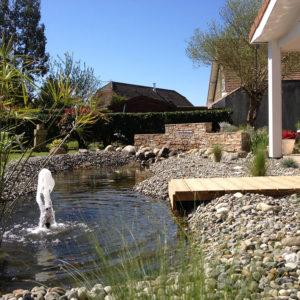 Un havre de paix avec un jet-d'eau à Serres-Castet