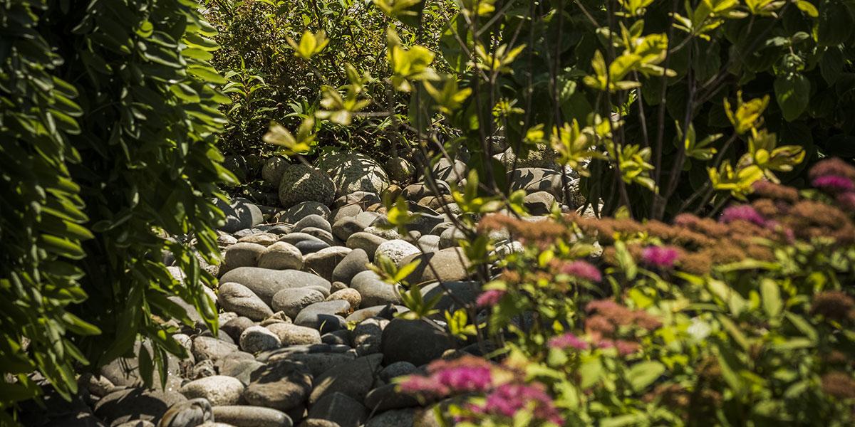 Jardin avec paillage d'un massif à Pau