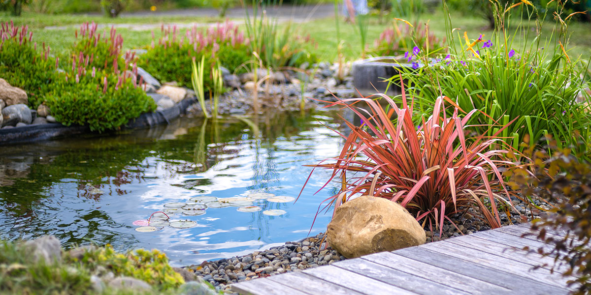 Détente autour d'un bassin - Paysagiste Pau